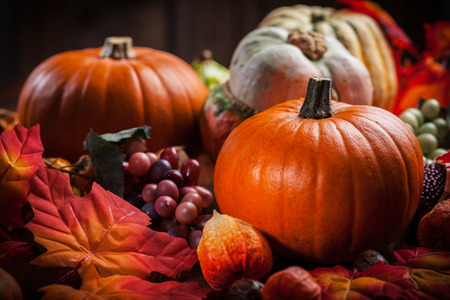 thanksgiving cornucopia: Traditional pumpkins for Thanksgiving and  Halloween in warm colors Stock Photo