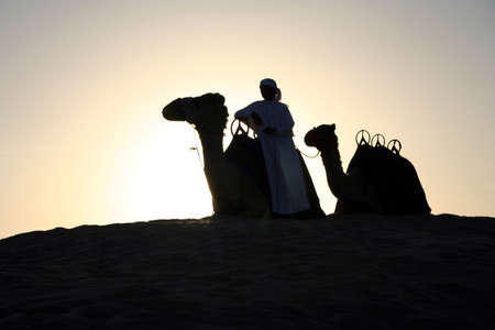 herder: An Arab Camel Herder pauses for a rest at sunset