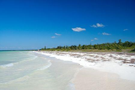 wild beach in a desert island at Caribbean sea