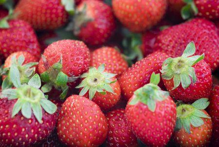 macro of a fruit strawberry Stock Photo - 1016261