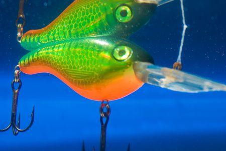 entrap: fishing bait underwater in a blue clear water