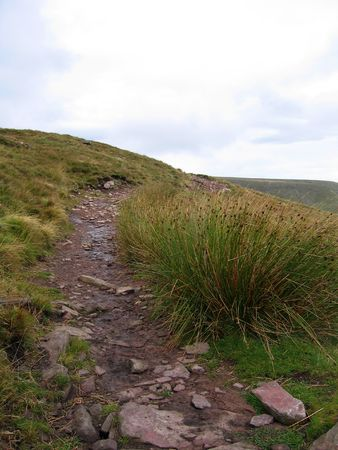 brecon beacons: Stone walkway in Brecon Beacons, Wales