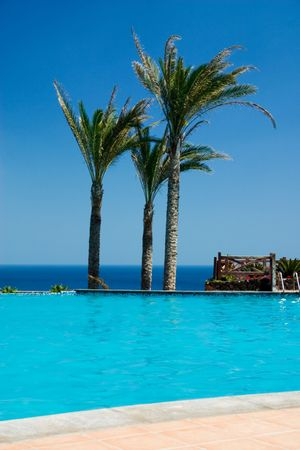 Beautiful poll with palm trees and ocean at the backgroung