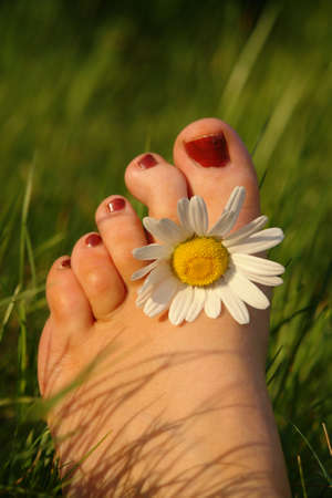 Summer feeling concept displaying a foot with a daisy between the toes Stock Photo - 910178