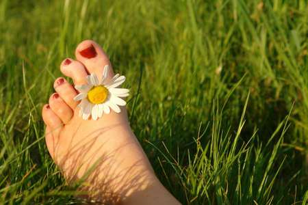 Summer feeling concept displaying a foot with a daisy between the toes Stock Photo - 910180