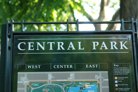 state park: central park in new york on a warm summers day