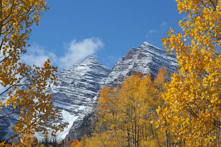 Maroon Bells and Golden Aspens photo