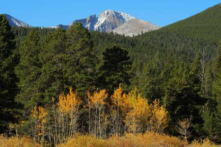 longs peak: Longs Peak and autumn aspens; Rocky Mountain National Park, Colorado Stock Photo