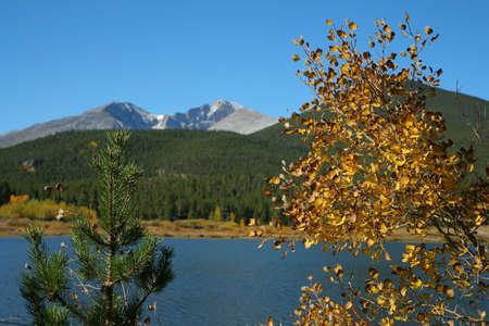 longs peak: Lily Lake, two trees; Longs Peak; Rocky Mountain National Park, Colorado