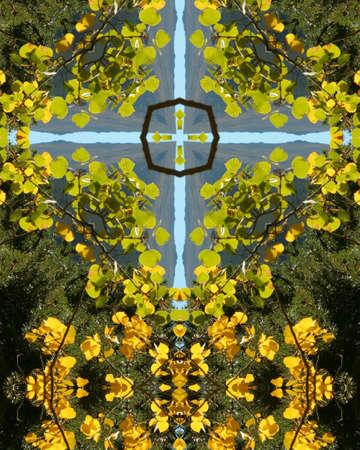 crux: kaleidoscope cross:  changing aspens, Colorado