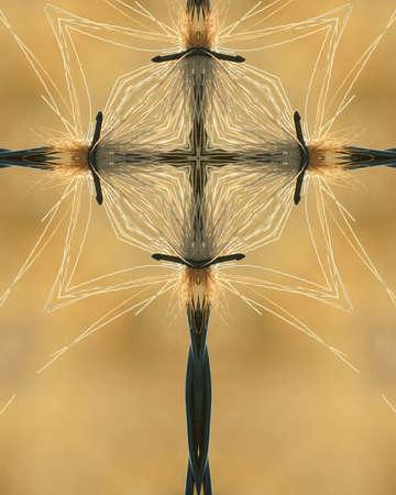 crux: kaleidoscope cross: deer fur caught on barbed wire 2