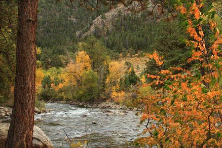 cache la poudre river: Cache La Poudre River in autumn, northern Colorado