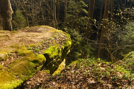 promontory: sunlit rocky promontory, Cantwell Cliffs, Hocking Hills State Park, Ohio