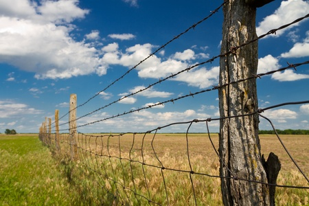barbed wire and fence: barbed wire fence, Kansas pasture Stock Photo