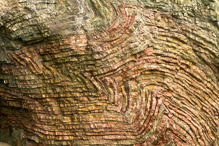 rock formation: folded layers of sedimentary chert at Rainbow Rock, Brookings, Oregon