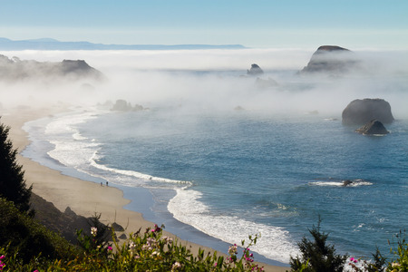 foggy morning over Pacific Ocean at Brookings, Oregon photo