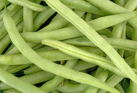 Snap Green Beans (12MP camera,macro) Stock Photo