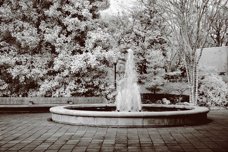 cutoff: True infrared photo of a botanical water fountain. Modified camera with 720nm cutoff filter. Sepia tone.