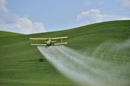 pulverizador: Agricultura: una baja duster volador de cultivo de biplano amarillo rocía un campo agrícola en la región de Yakima, Washington, Estados Unidos.