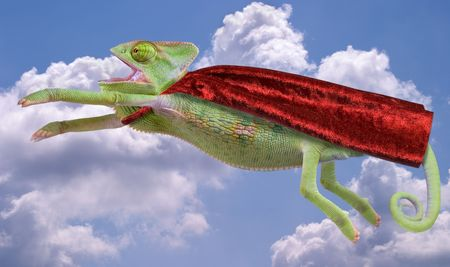 A veiled chameleon is flying through the sky wearing a red cape. Stock Photo - 2800621