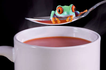 A  red-eyed tree frog is sitting on a spoon over a cup of hot tomato soup.