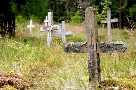 Abandoned cemetery and wooden crosses in Pape, Latvia Stock Photo - 1498515