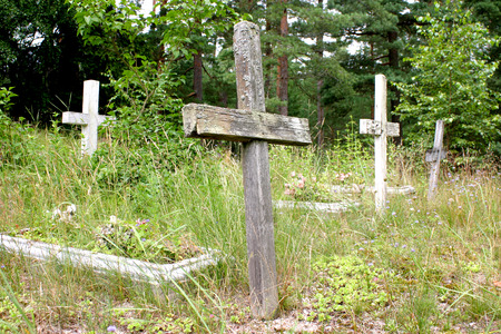 forgetfulness: Old abandoned cemetery with wooden crosses in Pape, Latvia Stock Photo