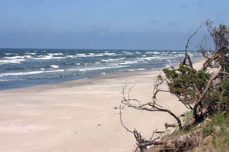 Empty sandy beach and stormy Baltic sea Stock Photo