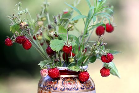 wild strawberry: Wild strawberry bouquet daped in flower vase