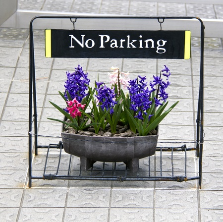 Nice and polite No Parking sign with pot of flowers Stock Photo - 13283088