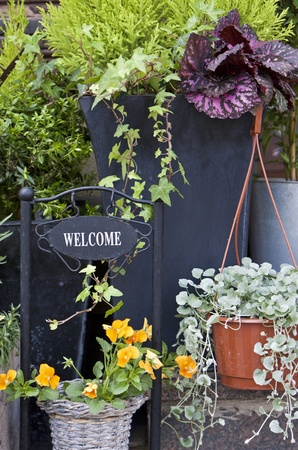 Flower arrangement with welcome greeting on metal plate Stock Photo - 13885929