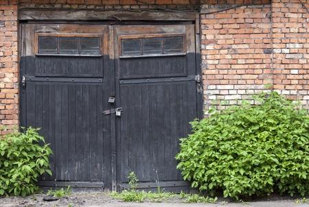 Old abandoned wooden garage doors overgrown with plants photo