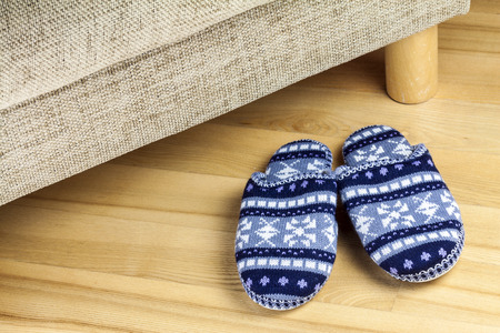 slipper: A pair of wool slippers standing by couch in living room