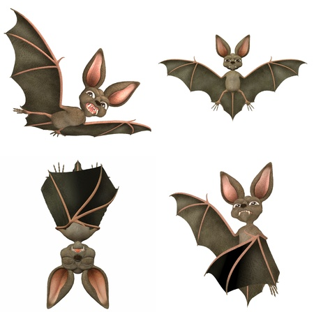 Illustration of a pack of four (4) bats with different poses and expressions isolated on a white background illustration