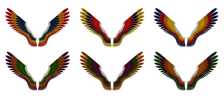 Illustration of a pack of six differently coloured angel wings, red, yellow, orange, blue, purple and green, on a white background  illustration