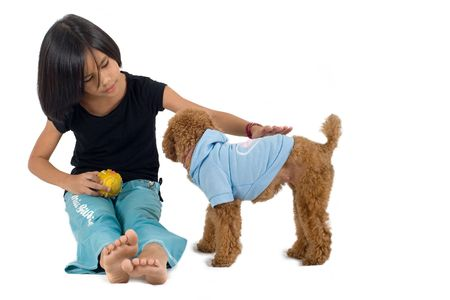 petting: Young pretty Eurasian Chinese girl petting a small dog