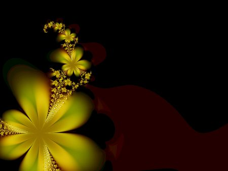 Beautiful flower on a black background Stock Photo - 966577