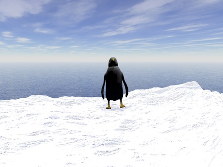 friendless: Lonely  penguin on a floating ice floe in the Atlantic ocean