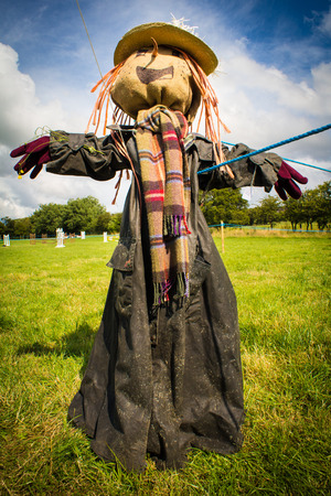 scarecrow: Full length portrait view of a scarecrow in a field on a sunny day