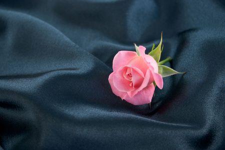 A pink rosebud lying on blue satin
