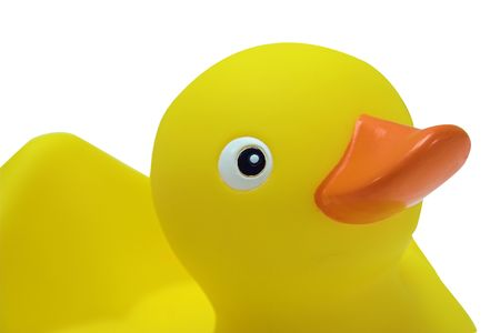 squeaky clean: A toy rubber duck ready for bath time Stock Photo