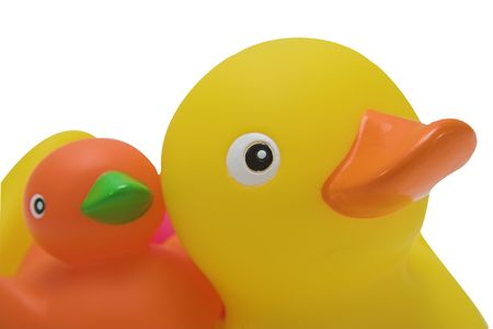 squeaky clean: Two rubber ducks ready for bath time
