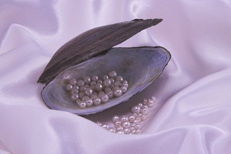 A shell holding pearls on pink silk photo