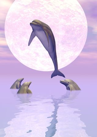 porpoise: A pod of dolphins playing in the moonlight.