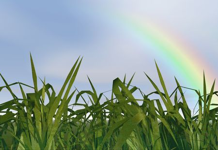 Long grass with a rainbow Stock Photo - 350252