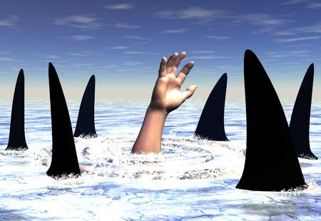 peril: Swimming with sharks