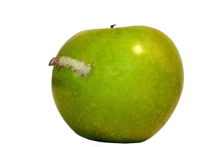 fruit worm: An ugly worm pops out of an apple