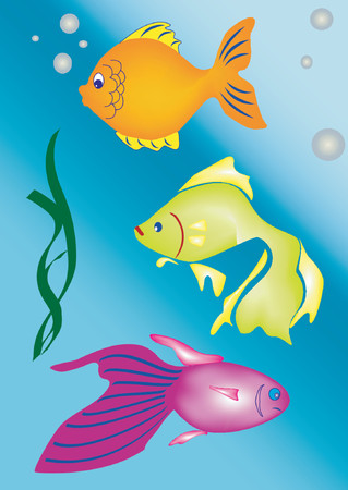 biggest animal: A group of fishes swimming (Vector)