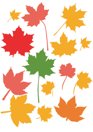 Many maple leaves in their brilliant fallautumn colors Illustration