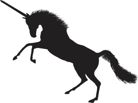 A fantastic unicorn.  A vector image easily to scale and recolour.